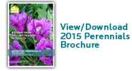2014ViewDownload.Perennials.Brochure