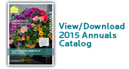 2015.View.Download.Annuals.Catalog
