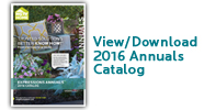 2016.View.Download.Annuals.Catalog
